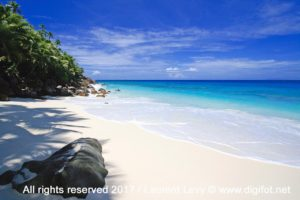 Anse Victorin - Fregate Island | all rights reserved 2017 © www.digifot.net